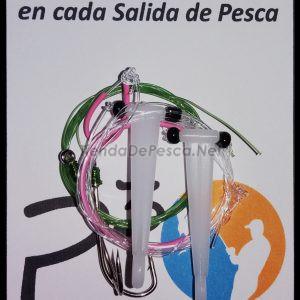 LINEA DE FONDO